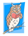owl reading book